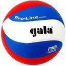 Volejbalový míč Gala lepený Pro Line - BV 5591