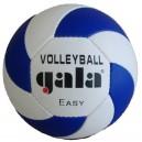 Volejbalový míč šitý Easy BV 5083