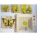 Životní cyklus motýla